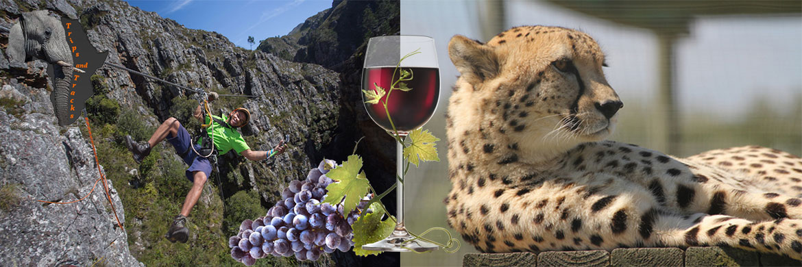 Zipline, Cheetah & Wine Tour